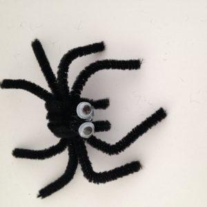 Araignée rigolote chenille halloween