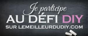 defi-diy-lemeilleurdudiy-300-125