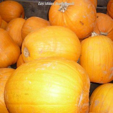 Souvenirs: chasse au trésor Halloween rapide