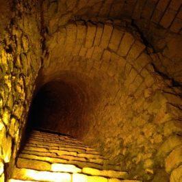 escalier abbaye saint nicaise taittinger