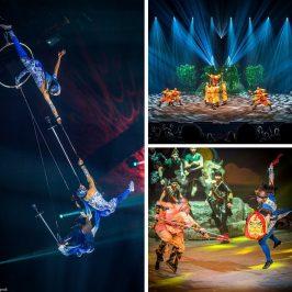 cirque phenix une