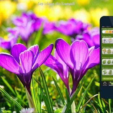 Fleurs en poche: une app. pour identifier facilement les fleurs