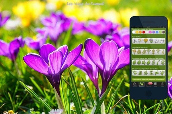 app iphone identification fleurs