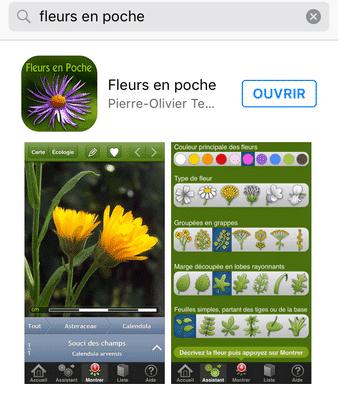 fleurs en poche une app pour identifier facilement les fleurs. Black Bedroom Furniture Sets. Home Design Ideas
