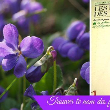 Les noms des fleurs, par Gaston Bonnier #rdvnature