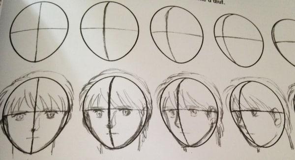 propotion visage manga
