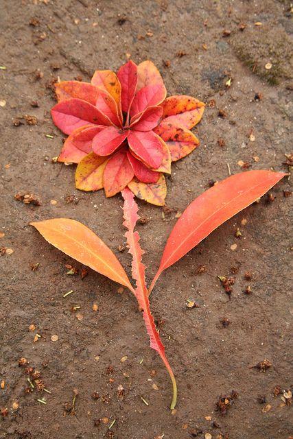 fleur feuille landart