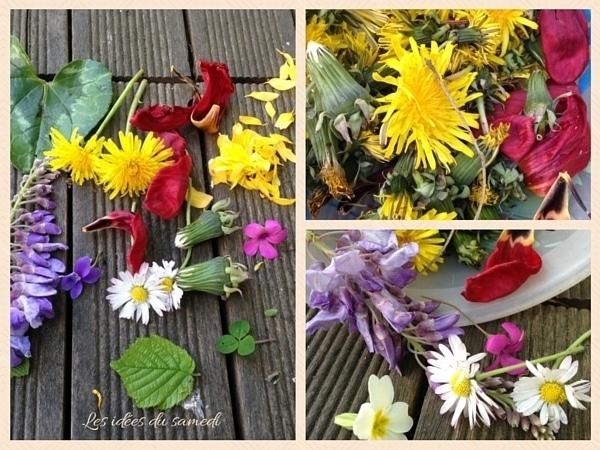 recolte fleurs landart