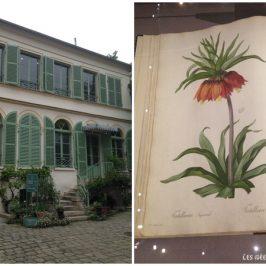 Une expo romantique: Le pouvoir des fleurs de Pierre-Joseph Redouté