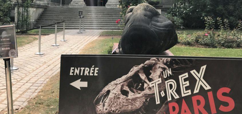 squelette tyrannosaure exposition paris