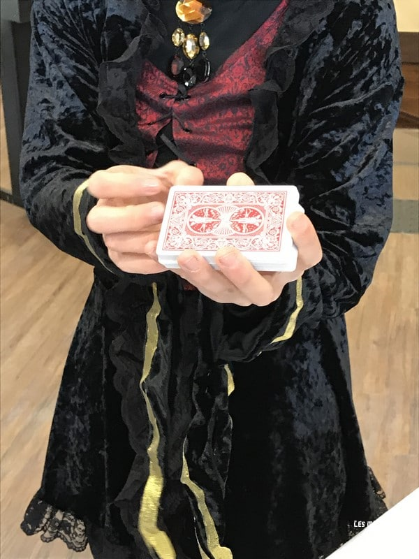 magicienne france miniature