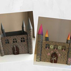 chateau carton mixte princesse dragon