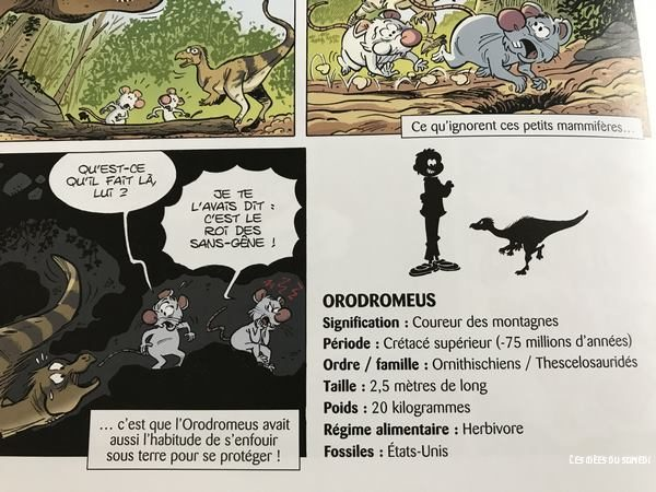 fiche identite dinosaure bande dessinee
