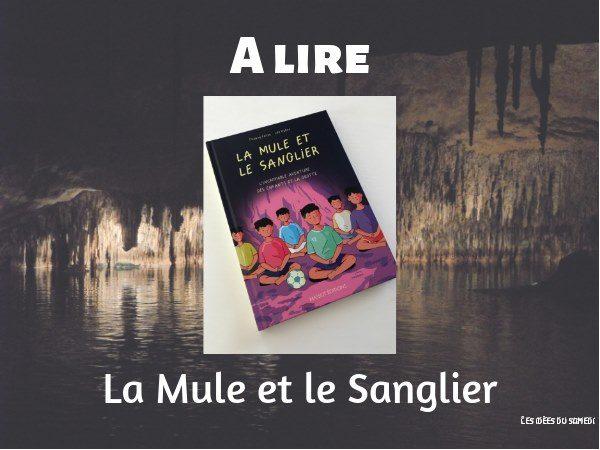 livre sur avaneture enfants grotte inondee thailande