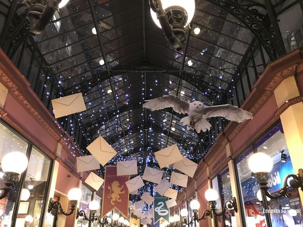 deco plafond harry potter hedwige