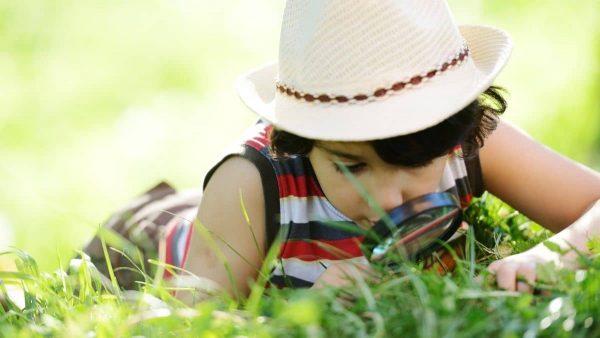 guide nature cadeaux enfants