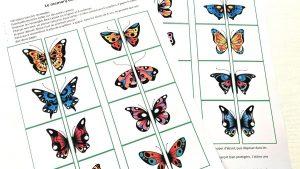 jeu memory papillons pdf lesideesdusamedi