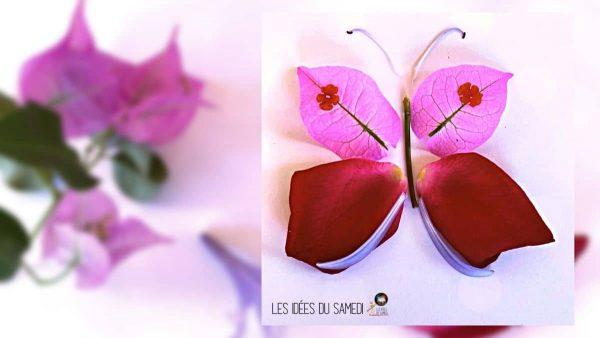 papillon-petales-fleurs